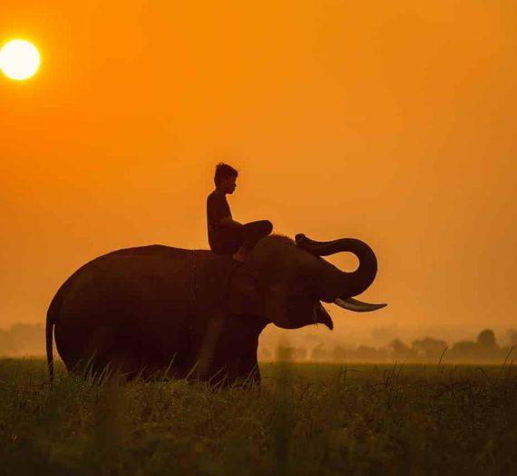 Le Cambodge en famille